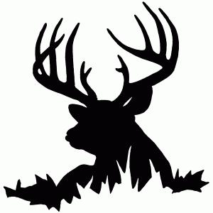 deer20_md
