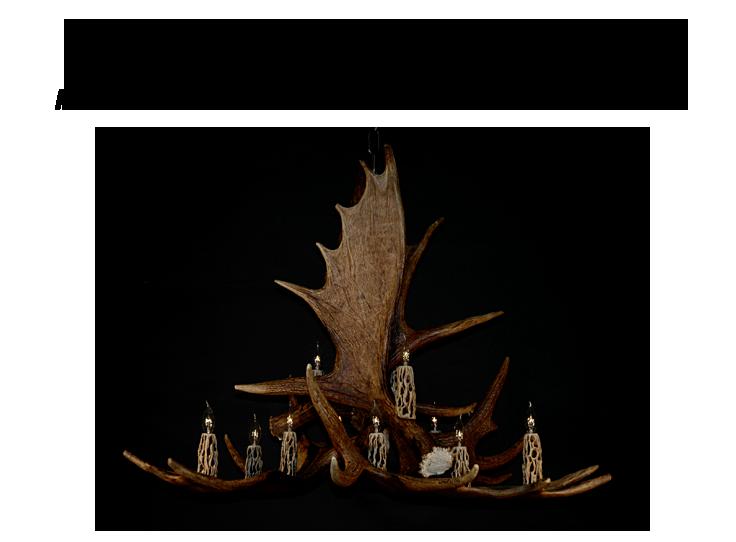 moose-antler-chandeliers-5