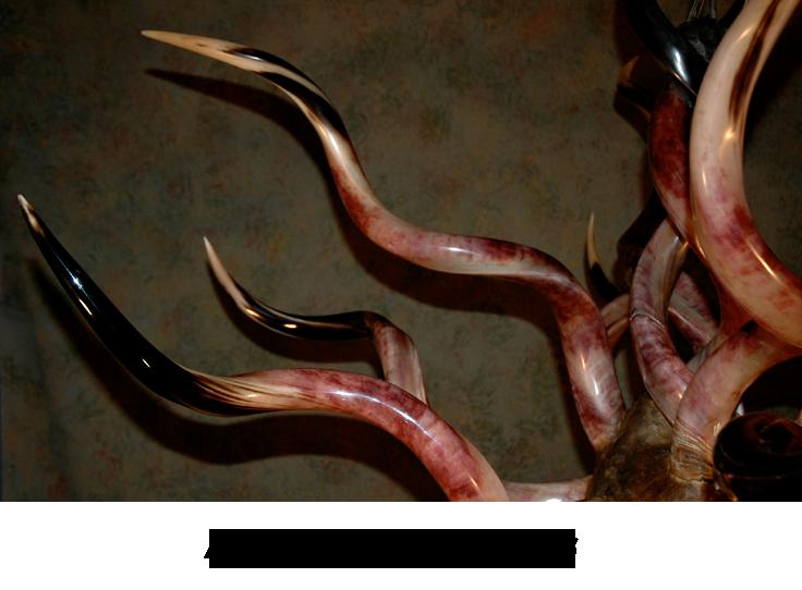 rustic-kudu-horn-chandeliers-6