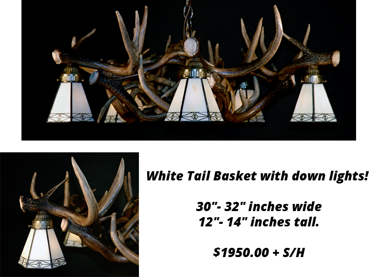 whitetail-antler-chandelier-11