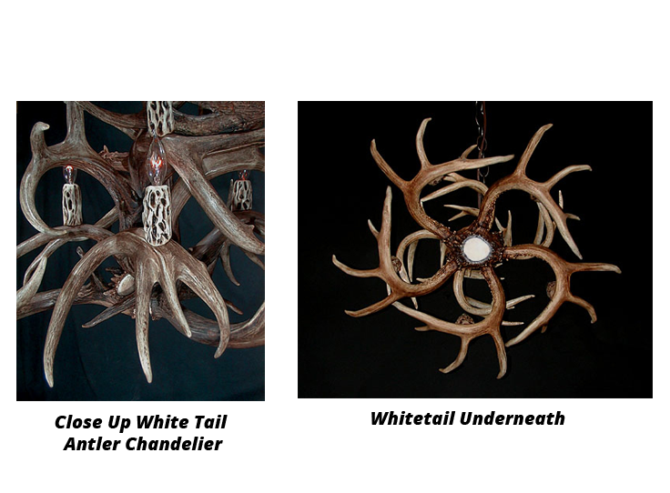 whitetail-antler-chandelier-4
