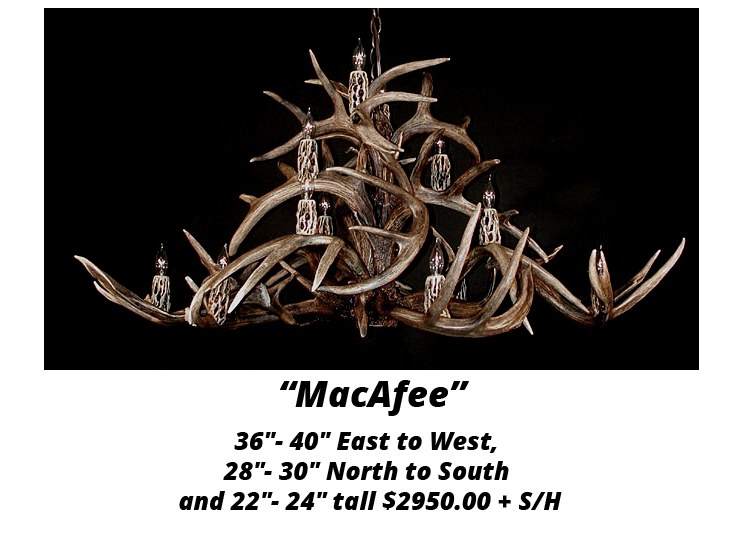 whitetail-antler-chandelier-6